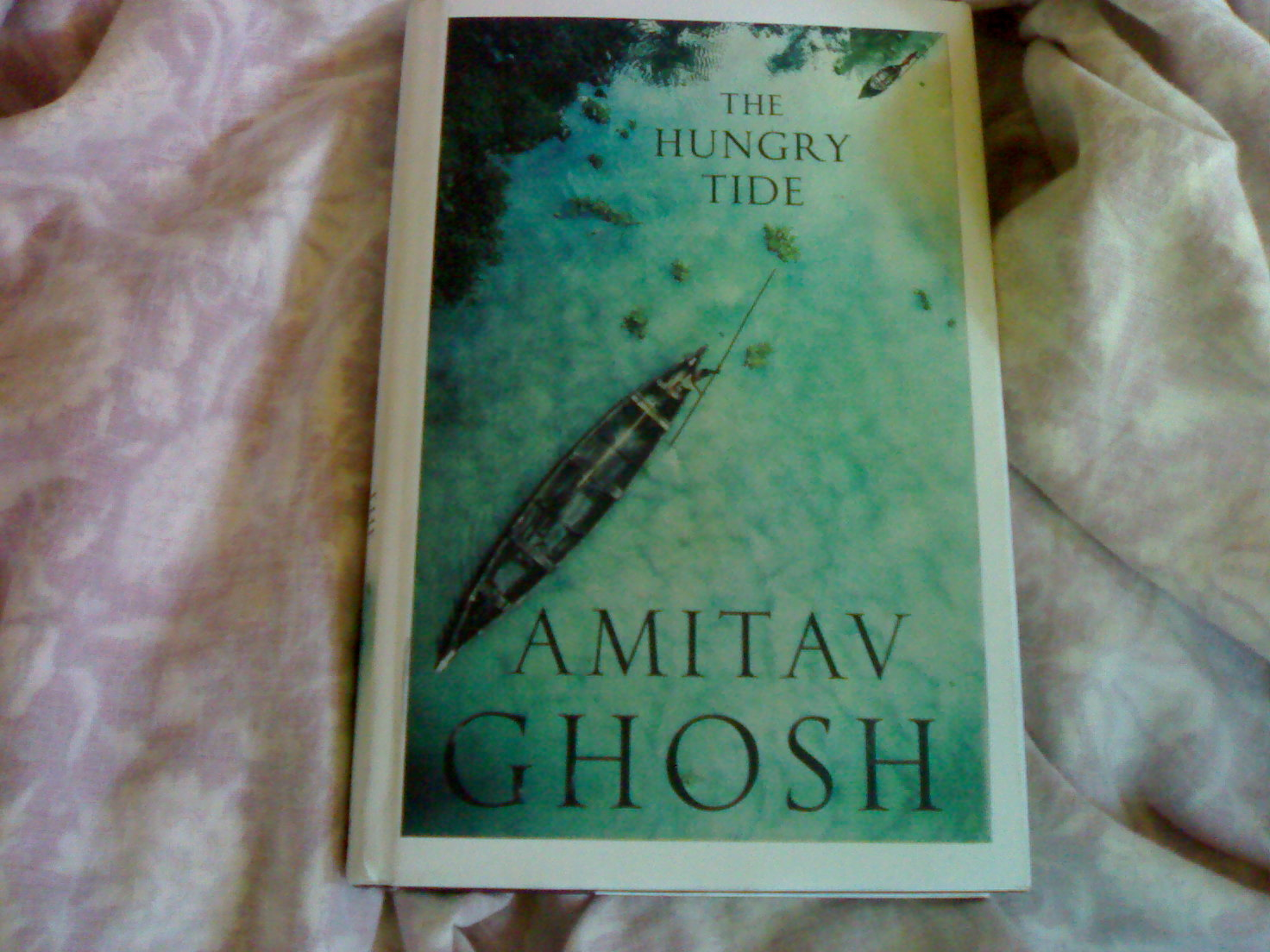 amitav ghoshs the hungry tide summary